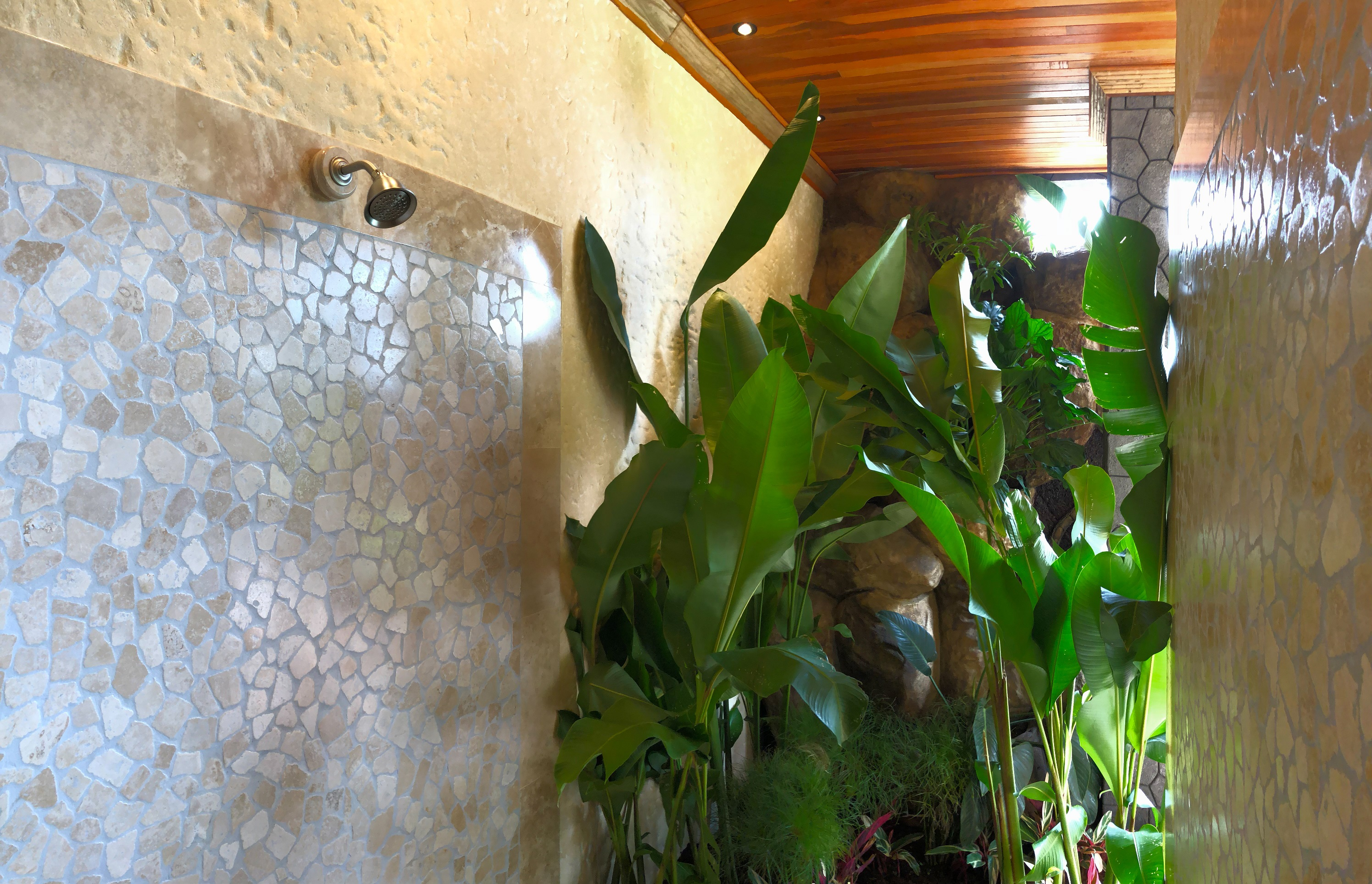 Arenal Hills Outside Shower With Privacy Landscaping